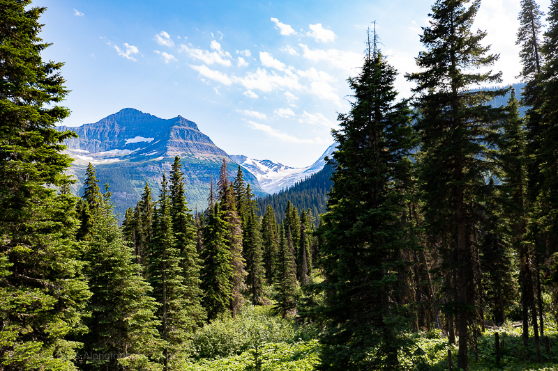 What to do in Glacier National Park - Jackson Glaier Overlook